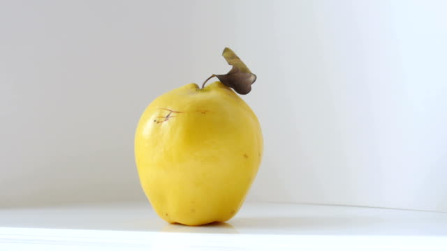 dolly: quince fruit on white background - quince stock videos & royalty-free footage