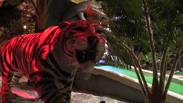 quotes from lane scott, director, lost city adventure golf. the brand new course has opened it's doors for the first time today after being forced to... - adventure stock videos & royalty-free footage