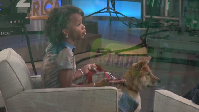 vidéos et rushes de quvenzhane wallis on the good morning america show with her dog sandy - celebrity sightings in new york on may 29, 2014 in new york city. - programme de télévision