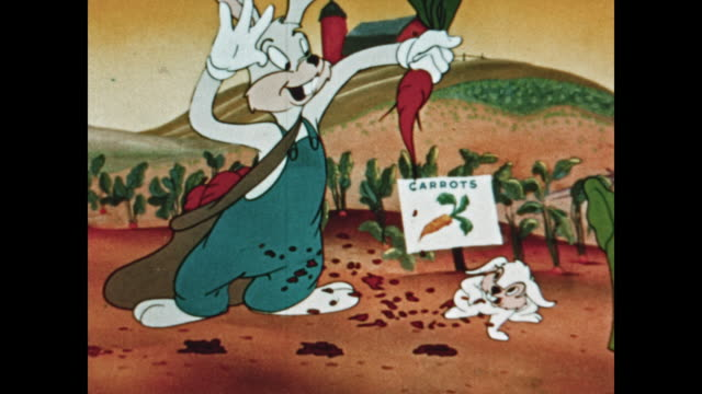 vidéos et rushes de rabbits collect carrots during harvest time - lapin