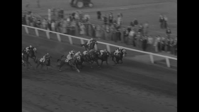 race horse loyalist, #2, ridden by jockey dave stevenson / wide shot long branch race track stands / pan crowd in stands & by track / horses tear out... - landwirtschaftsminister stock-videos und b-roll-filmmaterial