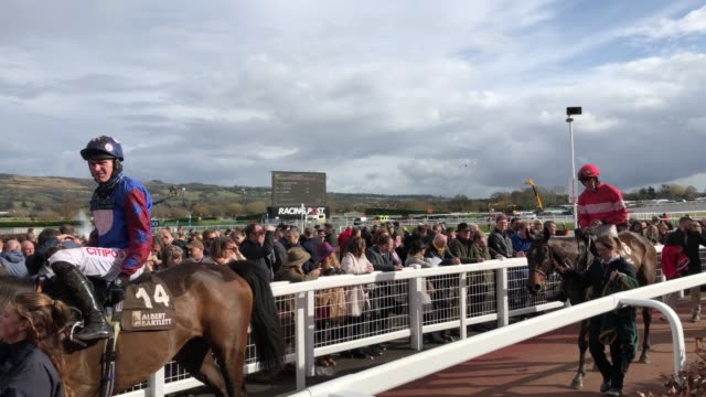 vídeos y material grabado en eventos de stock de racegoers watch the racing in the gold cup at cheltenham racecourse on gold cup day on march 16 2018 in cheltenham england thousands of racegoers... - apuestas deportivas