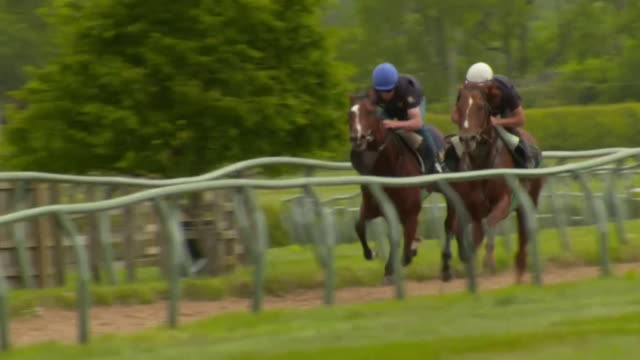 racehorses being trained during the coronavirus lockdown yorkshire - hooved animal stock videos & royalty-free footage
