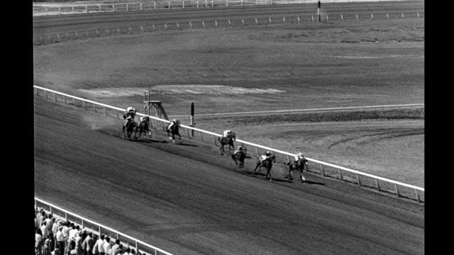 racehorses leave starting gate round track and cross finish line at del mar racetrack racehorses leave starting gate round track on september 06 1947... - starting gate stock videos and b-roll footage