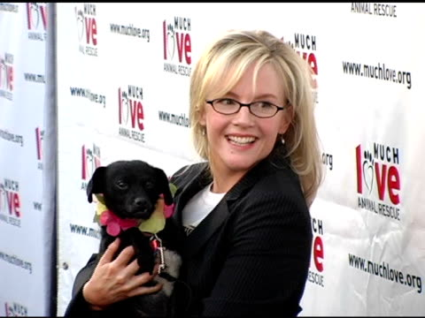 rachael harris at the 4th annual much love animal rescue celebrity comedy benefit at the laugh factory in hollywood california on august 10 2005 - rachael harris stock videos and b-roll footage