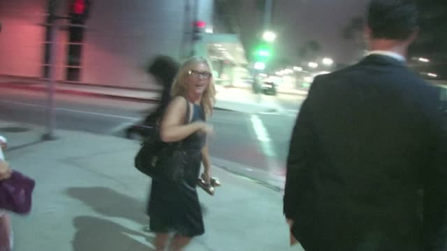 rachael harris leaving the help premiere in beverly hills - rachael harris stock videos and b-roll footage