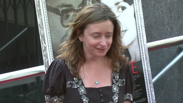 rachel dratch at the new york premiere of the awardwinning documentary 'crazy love' at the beekman 12 theater in new york new york on may 22 2007 - ドキュメンタリー映画点の映像素材/bロール