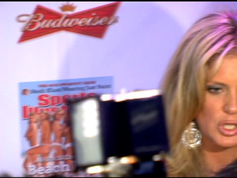 rachel hunter at the 2006 sports illustrated swimsuit issue photocall at crobar in new york, new york on february 14, 2006. - レイチェル ハンター点の映像素材/bロール