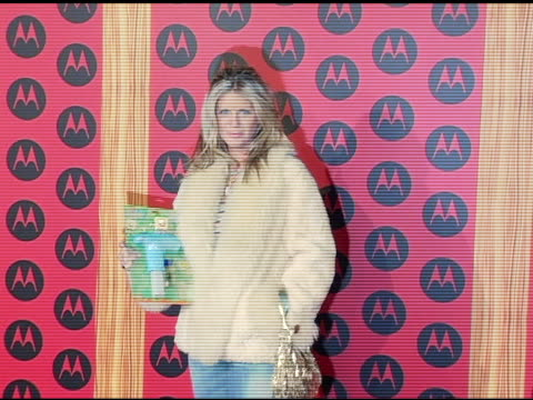 rachel hunter at the motorola 6th anniversary holiday party arrivals at the music box theater in hollywood, california on december 2, 2004. - レイチェル ハンター点の映像素材/bロール