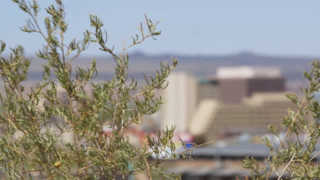 Rack focus, buildings and landscape in Albuquerque