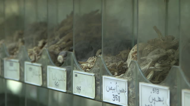 rack focus on herbs with arabic names. - herb stock videos & royalty-free footage