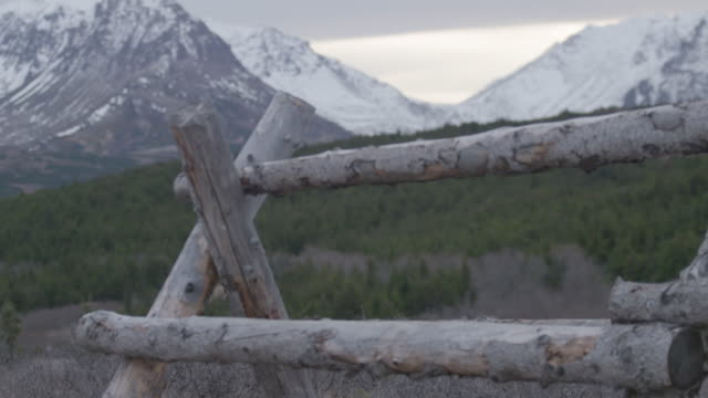 stockvideo's en b-roll-footage met rack focus shot of a trestle in front of a mountain in the arctic national wildlife refuge - arctic national wildlife refuge
