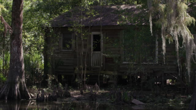 vídeos de stock e filmes b-roll de rack focus shot of an abandoned house in the middle of the flooded forest - cabana de madeira