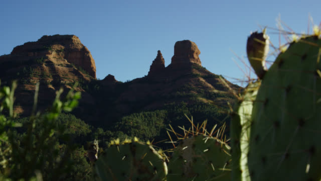 rack focus shot of mountain rock formations in arizona in the background with cacti in the foreground on a sunny day - sedona stock videos & royalty-free footage