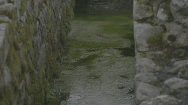 rack focus shot of the aqueduct in a military bath house at the vindolanda roman fort - aquatic plant stock videos & royalty-free footage