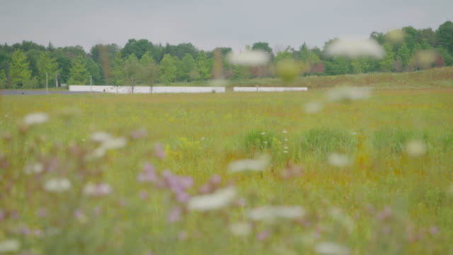 rack focus shot of the flight 93 memorial site - concrete wall stock videos & royalty-free footage