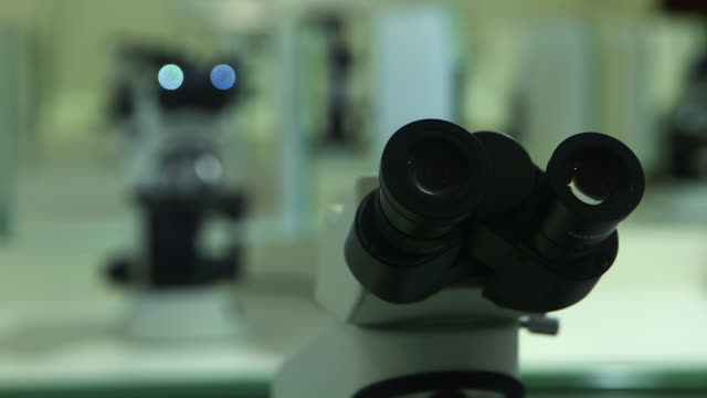 rackfocus on a microscope - magnification stock videos & royalty-free footage