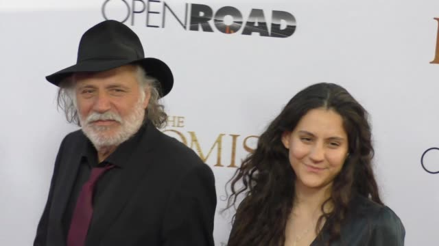 """rade serbedzija at """"the promise"""" los angeles premiere at tcl chinese theatre on april 12, 2017 in hollywood, california. - tcl chinese theatre stock videos & royalty-free footage"""