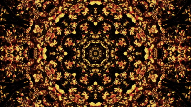 A Radial Kaleidoscope of Fall Colors