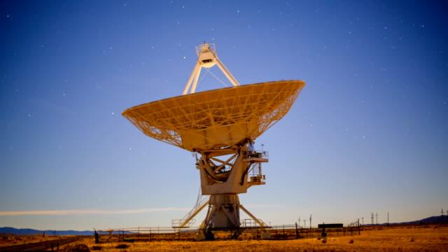 vídeos y material grabado en eventos de stock de radiotelescopio - antena parte del cuerpo animal