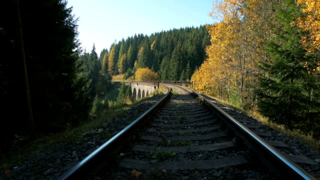 railroad track in the forest - potter stock videos and b-roll footage