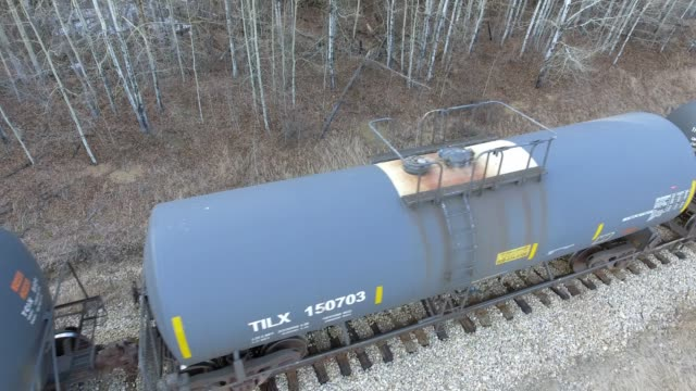 railroad train - boreal forest stock videos & royalty-free footage