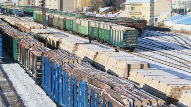 railway carriages full of timber and other resources which imported from russia stop at manzhouli railway station manzhouli city is the largest... - timber stock videos & royalty-free footage