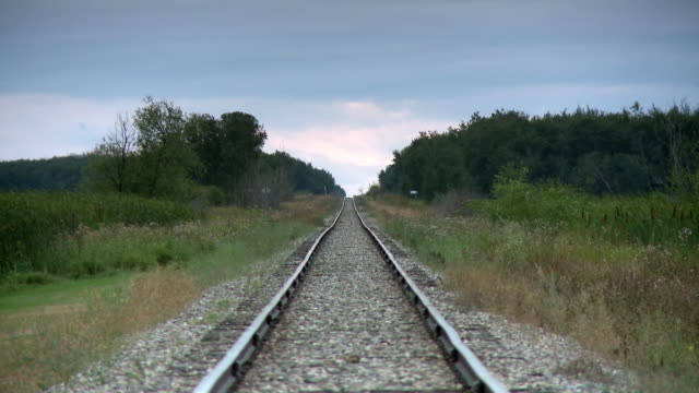 A railway  surrounded by trees that joined the horizon