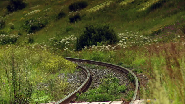 A railway that passes through the grass near a forest