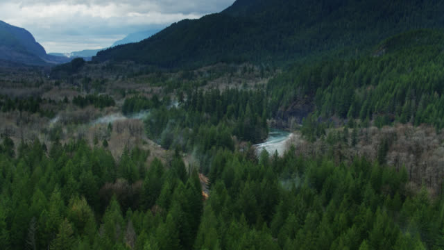 vídeos de stock e filmes b-roll de railway tracks through forest along fast flowing skykomish river - drone shot - território selvagem