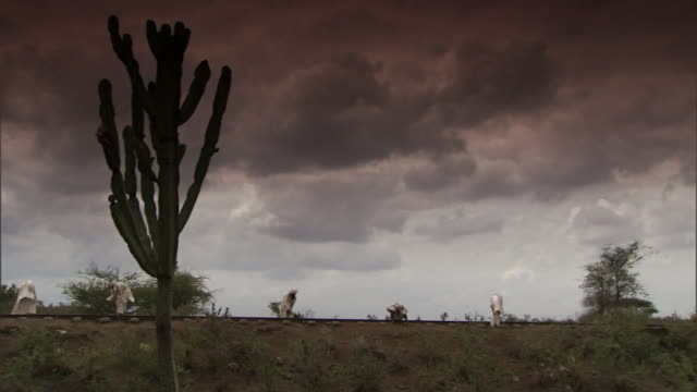 stockvideo's en b-roll-footage met railway workers uses tools on a train track in the tanzania desert. - pikken