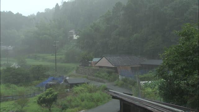 Rain _daigahara Nara