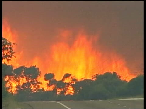 new south wales blue mountains fire vehicles parked on road beside blazing bush fire gvs flames blazing ms firefighter lighting scrub at side of road... - fire hose stock-videos und b-roll-filmmaterial