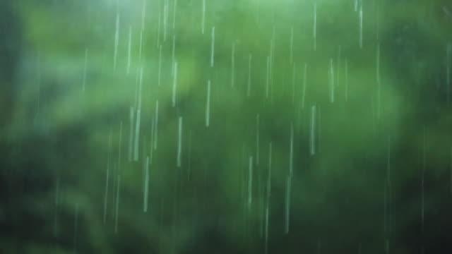Rain drizzles.