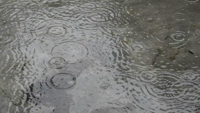 rain drop falling on the floor during rainy season - flooring stock videos & royalty-free footage