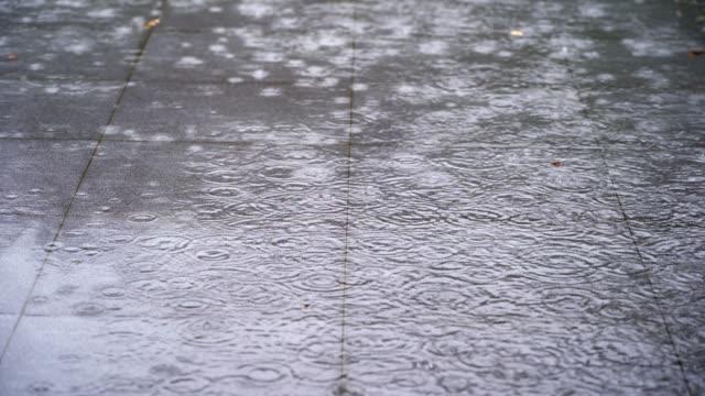 vídeos de stock, filmes e b-roll de gota de chuva caindo no chão na estação chuvosa - pingo de chuva