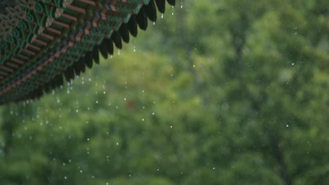 rain dropping on eaves of songgwangsa temple / suncheon-si, jeollanam-do, south korea - moulding trim stock videos & royalty-free footage