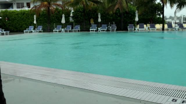 stockvideo's en b-roll-footage met ws rain drops falling in tropical swimming pool / miami, florida, usa - buitenbad