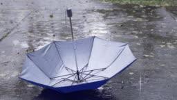 Rain Drops keep falling on the Umbrella in rainy season