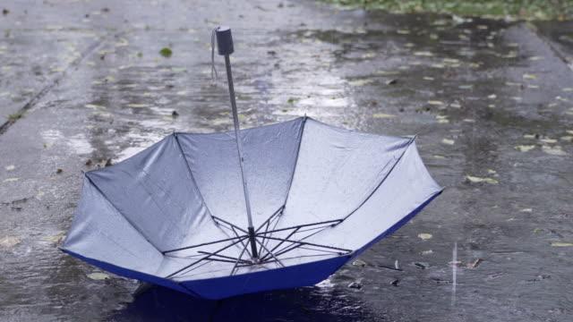 rain drops keep falling on the umbrella in rainy season - ombrello video stock e b–roll