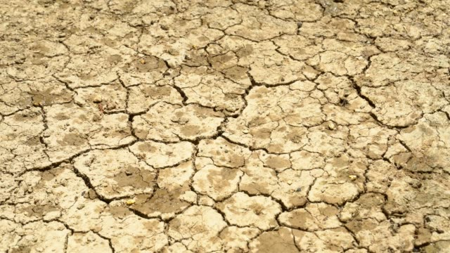 rain drops on cracked earth. - dry soil stock videos & royalty-free footage