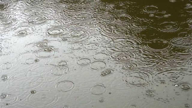 rain drops on the water surface - rippled stock videos & royalty-free footage