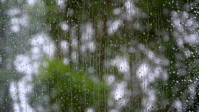rain drops on the window - shower videos stock videos & royalty-free footage