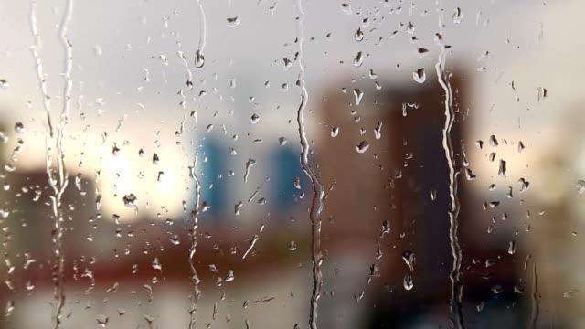 rain drops - rain stock videos and b-roll footage