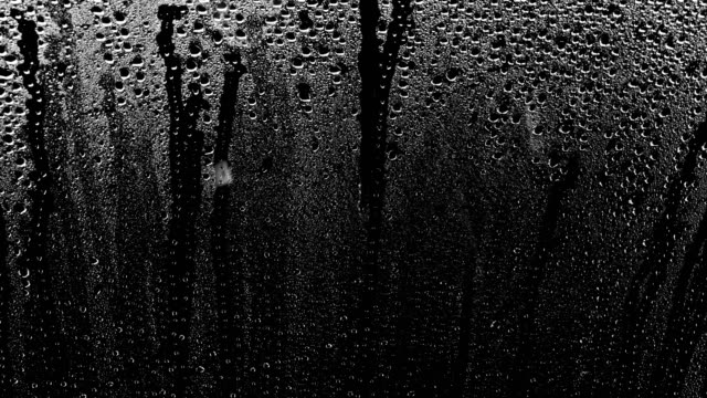 rain drops - condensation stock videos and b-roll footage