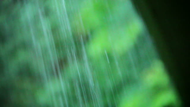 rain falling from the eaves - eaves stock videos and b-roll footage