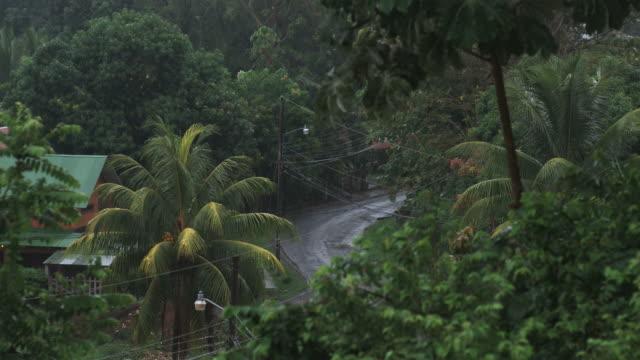vídeos de stock, filmes e b-roll de rain falling in a village in costa rica - costa rica
