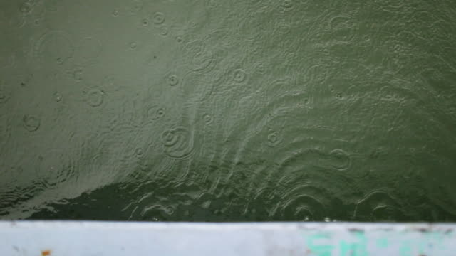 rain falling in the sea   overhead view - raindrop stock videos & royalty-free footage