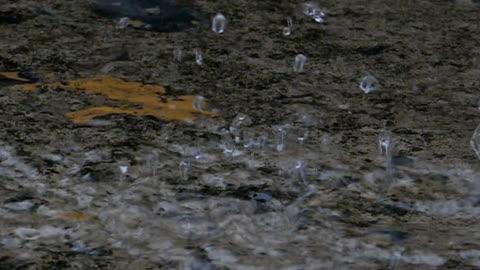 スローモーションで床に降る雨。 - 階点の映像素材/bロール