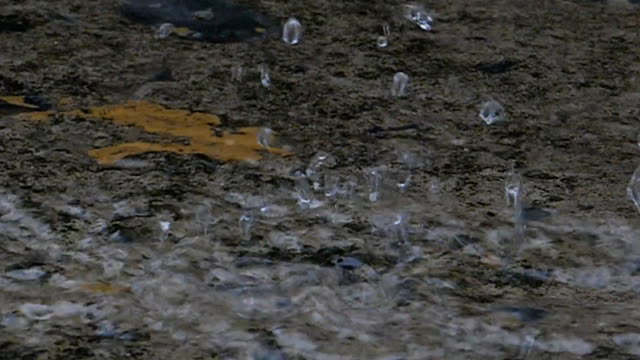 vídeos y material grabado en eventos de stock de lluvia cayendo sobre el suelo a cámara lenta. - piso de edificio